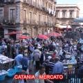 mercatocatania