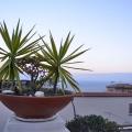 terrazza-hostel-3